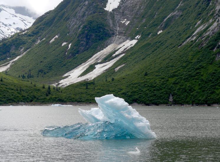 Bergy bits in Tracy Arm, Alaska
