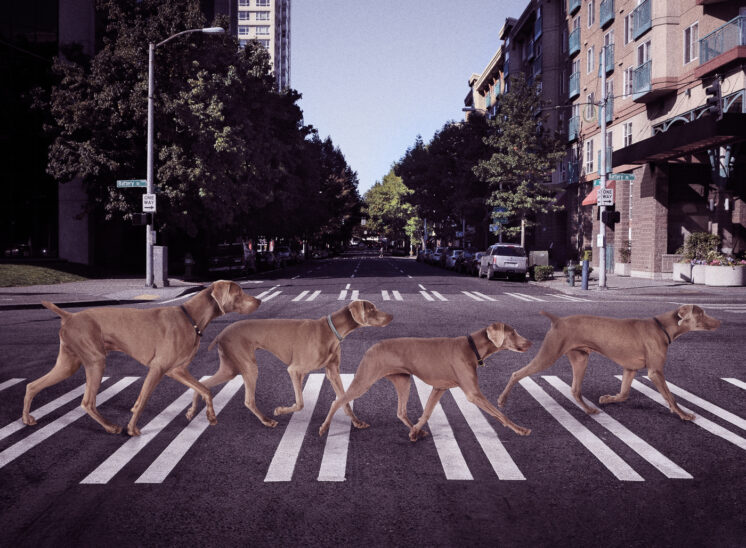 KZOK Annual Calendar, The Beatles, Abbey Road