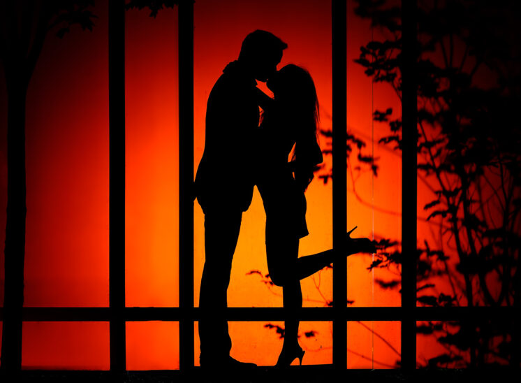 A romantic kiss between newlyweds, silhouetted and backlit against a garden backdrop. Jerry and Lois Photography