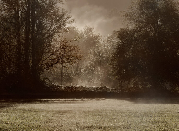 Early morning mists punctuated by slices of sunlight, everything aglow. Jerry and Lois Photography