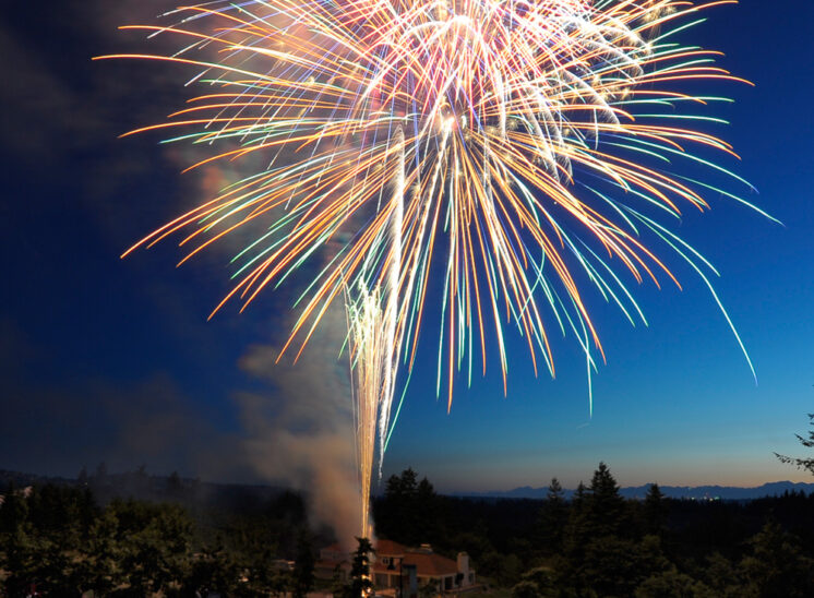 A colorful burst of 4th of July Fireworks over a crowd of excited attendees. Jerry and Lois Photography